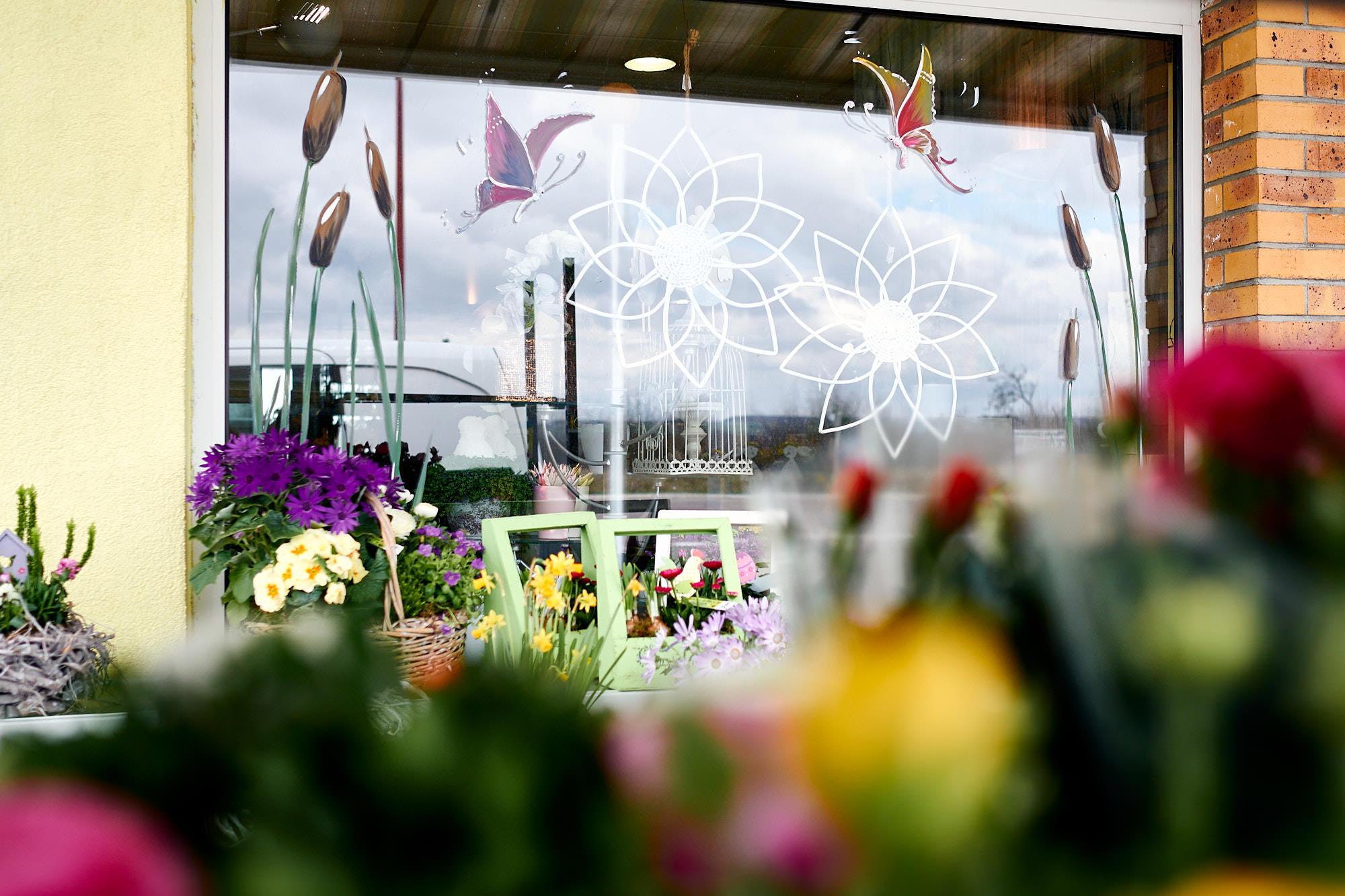 Peinture sur vitrine printemps – fleuriste à Woustwiller